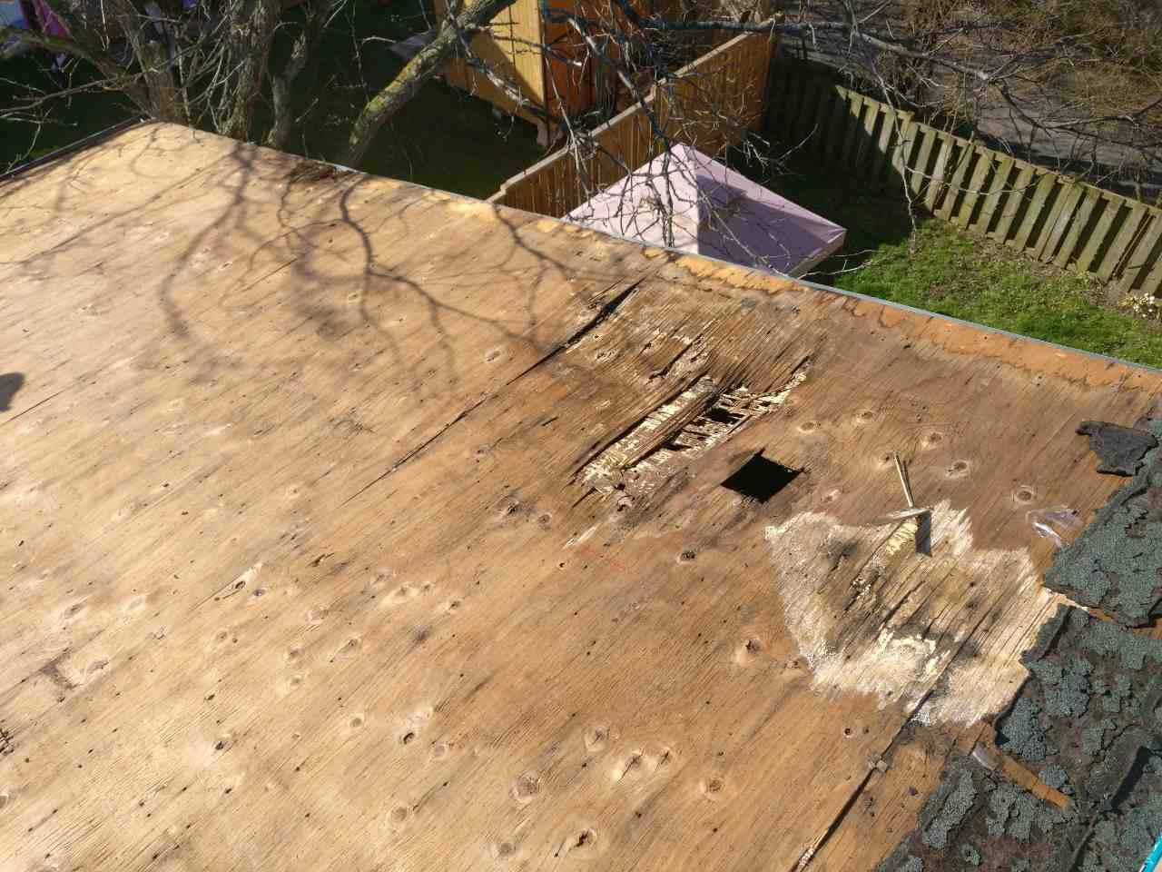 Flat roof Mississauga